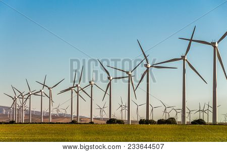 A Large Group Of White Wind Generators Produces Alternative Energy By Wind On The Fields In Europe I
