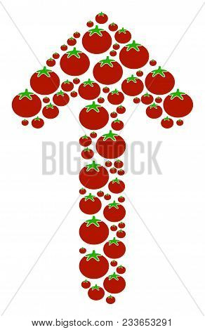 Arrow Direction Collage Of Tomato In Various Sizes. Vector Tomatoes Elements Are Grouped Into Arrow