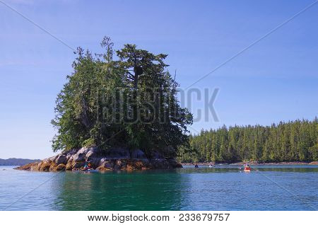 Kayakers Observe A Very Large Eagle's Nest On An Island In Raymond Passage, British Columbia