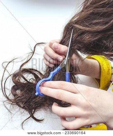 Brunette Girl Cuts Her Hair. A Professional Doing A New Hairstyle. Cutting Concept.