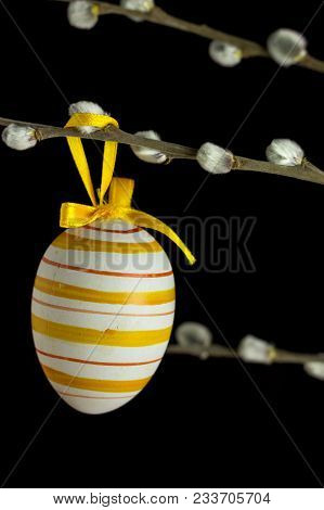 Striped Egg Pattern Suspended On A Catkins Branch In Front Of A Black Background.