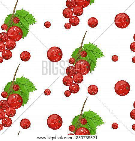 Seamless Vector Pattern Of Red Currant Fruit. White Background With Red Currant Berries For Design O