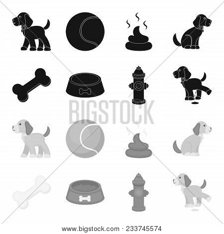 A Bone, A Fire Hydrant, A Bowl Of Food, A Pissing Dog.dog Set Collection Icons In Black, Monochrome