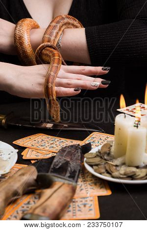 The snake descends to the ritual knife from the hands of the witch poster