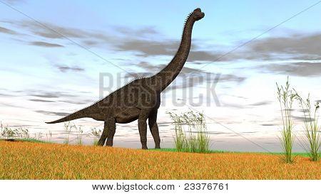 brachisaurus in grassland poster