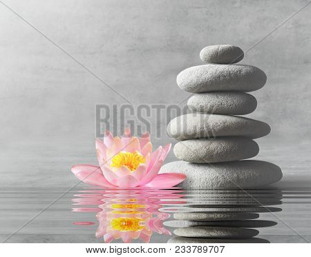 Stones And Pink Flower Lotus Balance. Zen And Spa Concept.