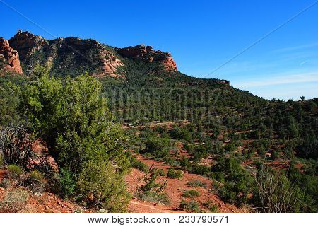 Brush And Vegetation With Mountains In The Background In The Arizona Desert.
