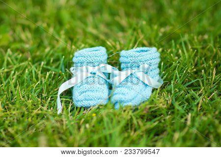Small Blue Baby Booties In Green Garden