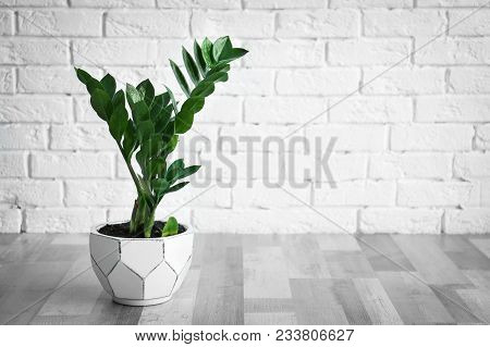 Tropical Plant With Green Leaves Against Brick Wall Indoors