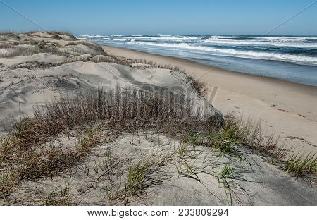 Dune Shoreline In North Carolina:  Large Sand Dunes Overlook The Beach At Cape Hatteras National Sea