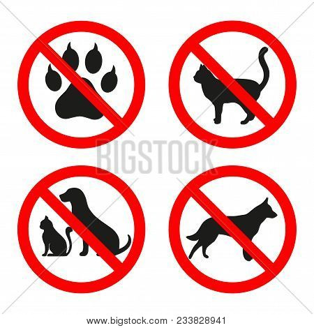 Signs Forbidden Dog And Cat In A Red Circle On A White Background.forbidden Animal Sign.