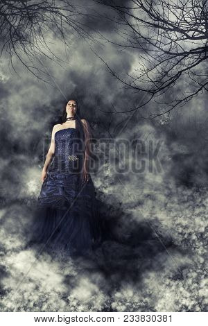Woman Bride With Wedding Blue Dress In Mysterious Landscape Spooky And Dark. Fog And Twigs In A Ghos