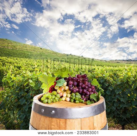 Barrel With Different Types Of Grape Over Vineyard Hills