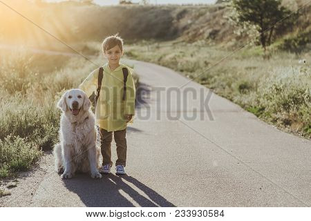 Contented Young Boy With Knapsack Standing On Sunlit Road With Big White Retriever Beside Him. Copy