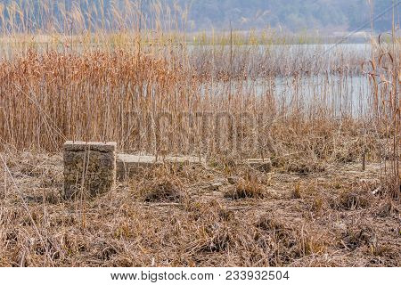 Foundation And Concrete Column Of Building In Tall Grass Of Dried Riverbed With River And Tall Reeds