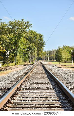 Straight Railroad Tracks Disappearing Iinto Distant Tress