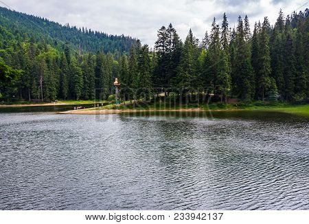 Beautiful Spruce Forest Around The Lake. Lovely Nature Scenery Of Synevyr National Park. Group Of To
