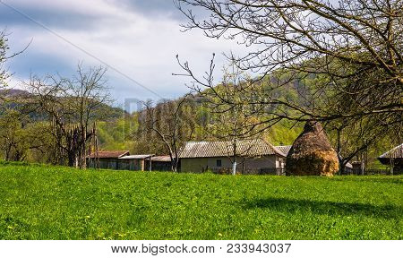 Orchard Near The Village In Springtime. Lovely Rural Scenery In Mountainous Area, Haystack On The Gr