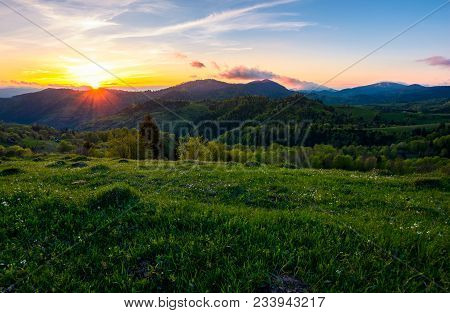 Sunset In Mountainous Countryside. Beautiful Landscape Of Carpathian Mountains With Grassy Meadow, F