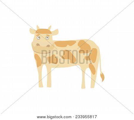 Young Cow Hand Drawn Illustration Isolated On White Background. Cute Cattle Farm Animal, Domestic Li