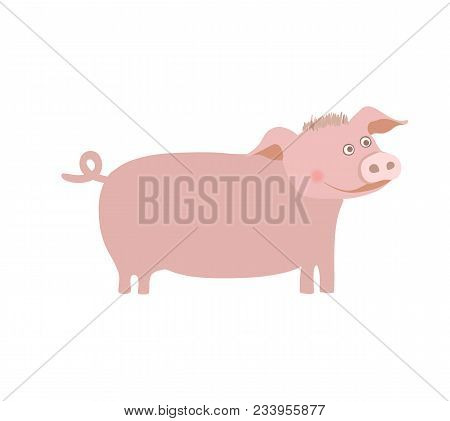 Farm Pet Pig Hand Drawn Illustration Isolated On White Background. Cute Farm Animal, Domestic Livest