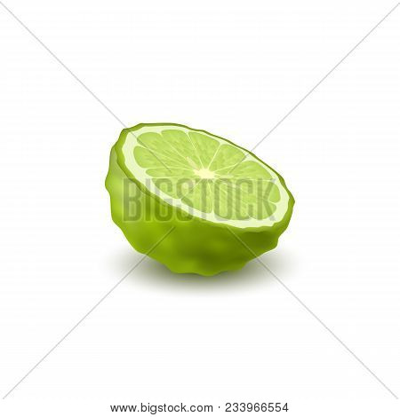 Isolated Colored Green Half Of Juicy Bergamot, Kaffir Lime With Shadow On White Background. Realisti