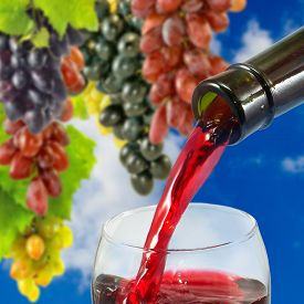 Image Of Wine On Grape Background Closeup