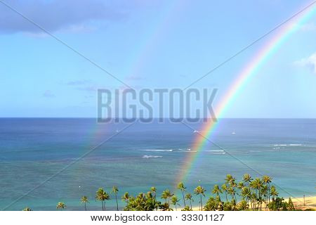Double rainbow and palms