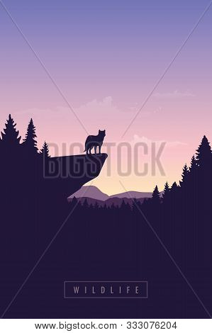 Wolf On A Cliff Wildlife Forest At Sunset Vector Illustration Eps10
