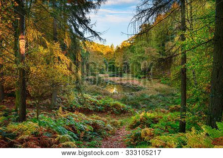 The Tarn In Morralee Wood At Allen Banks, And Staward Gorge In The English County Of Northumberland