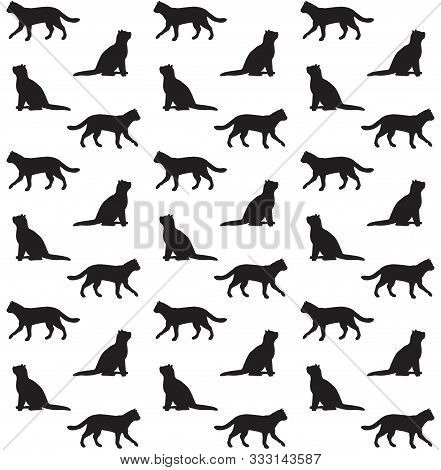 Vector Seamless Pattern Of Black Cats Silhouette Isolated On White Background