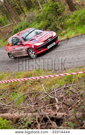 D. Cronin Driving Peugeot 206