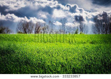 Green Grass Field After Thunderstorm Sun Light & Clouds On Sky. Spring Weather Thunderstorm Sun Rain