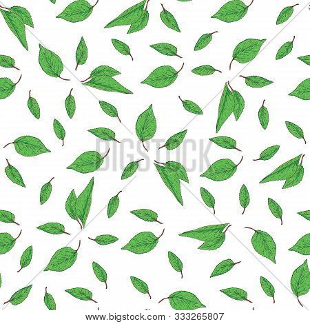 Seamless Pattern With Green Leaves On White Background