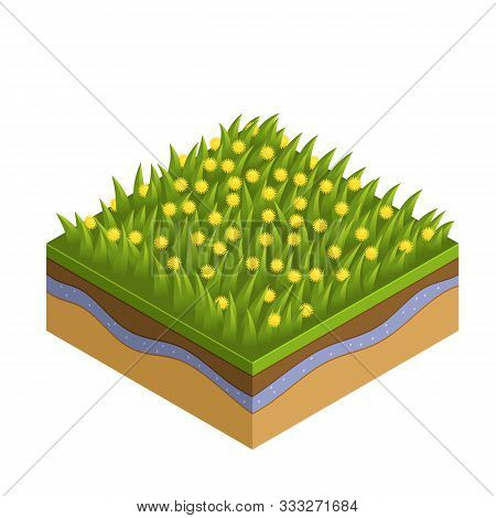 Grass And Soil Tile With Layers Isometric Vector. Fresh Summer Green Grass With Leave, Daisie, Flowe