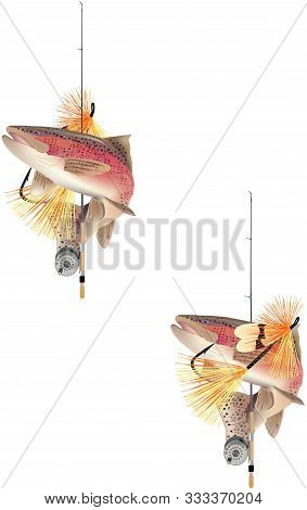 Fishing Fish Freshwater Salmon Trout Fishing Fish Freshwater Salmon Trout