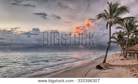 Hawaii Island Palms Beach. Turquoise Sea And Blue Sky. Palm Trees Beach Vacation Tropical Travel Sho