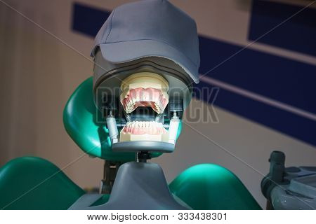 Skull In A Cap In The Dental Chair. Artificial Jaw And Dentures. The Irony And The Concept For The D