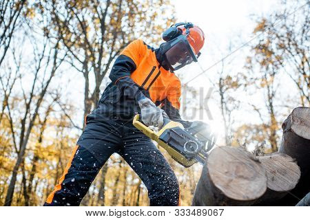 Professional lumberjack in protective workwear working with a chainsaw in the forest, sawing wooden logs poster