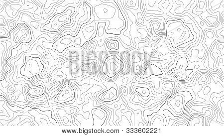 Topographic Map Background. Geographic World Topography Map Grid Abstract Vector Illustration. Topo