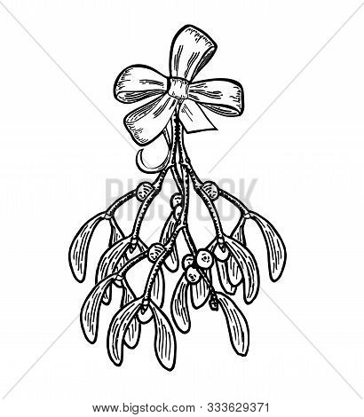 Mistletoe. Branch Of Mistletoe With Berries And Gift Bow Isolated On White Background.