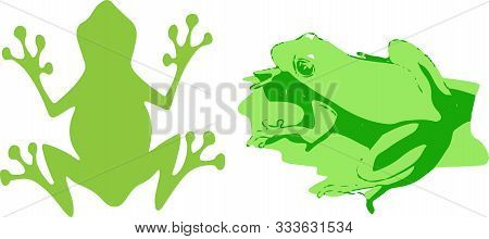 Frog Icon On White Background Tadpole, Toad, Tree, Tropical