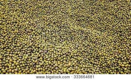 Lot Of Mung Beans Background. Big Heap Of Green Mung Beans In Supermarket. Close Up Pile Dry Legumes