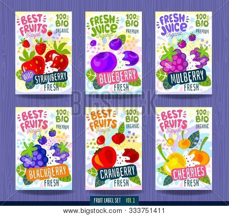 Abstract Splash Food Label Template. Colorful Brush Stroke. Fruits, Spices, Vegetables Package Desig