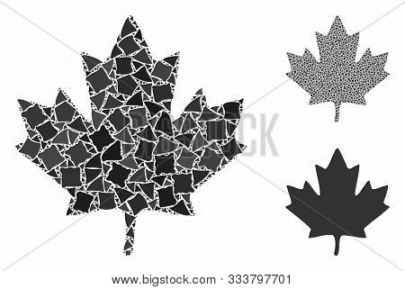 Maple Leaf Composition Of Abrupt Pieces In Different Sizes And Color Hues, Based On Maple Leaf Icon.