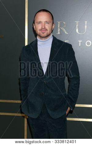 LOS ANGELES - NOV 11:  Aaron Paul at the