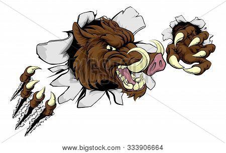 A Wild Boar Or Razorback Warthog Cartoon Sport Mascot Tearing Through A Wall With His Claws