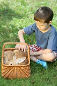 6-7 years old boy with rabbit - vacation poster