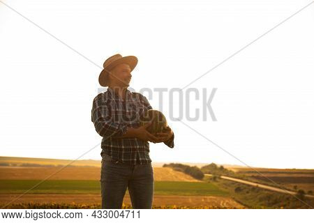 Silhouette Of A Farmear With Watermelon In The Field On A Sunny Summer Day. Man With Hat On His Head