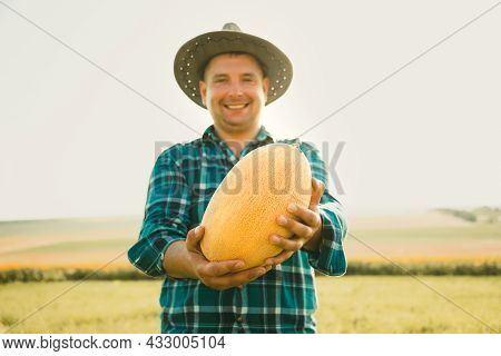 Selective Focus On The Melon. Smiling Farmer Man Holding A Melon In His Hand Is Happy And Looks At T